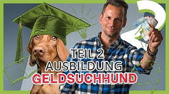 Hunde Ausbildung: Deinen Hund GELD suchen lassen