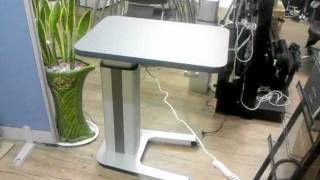 Electric Height Adjustable Table 애견 전동테이블, 미용테이블