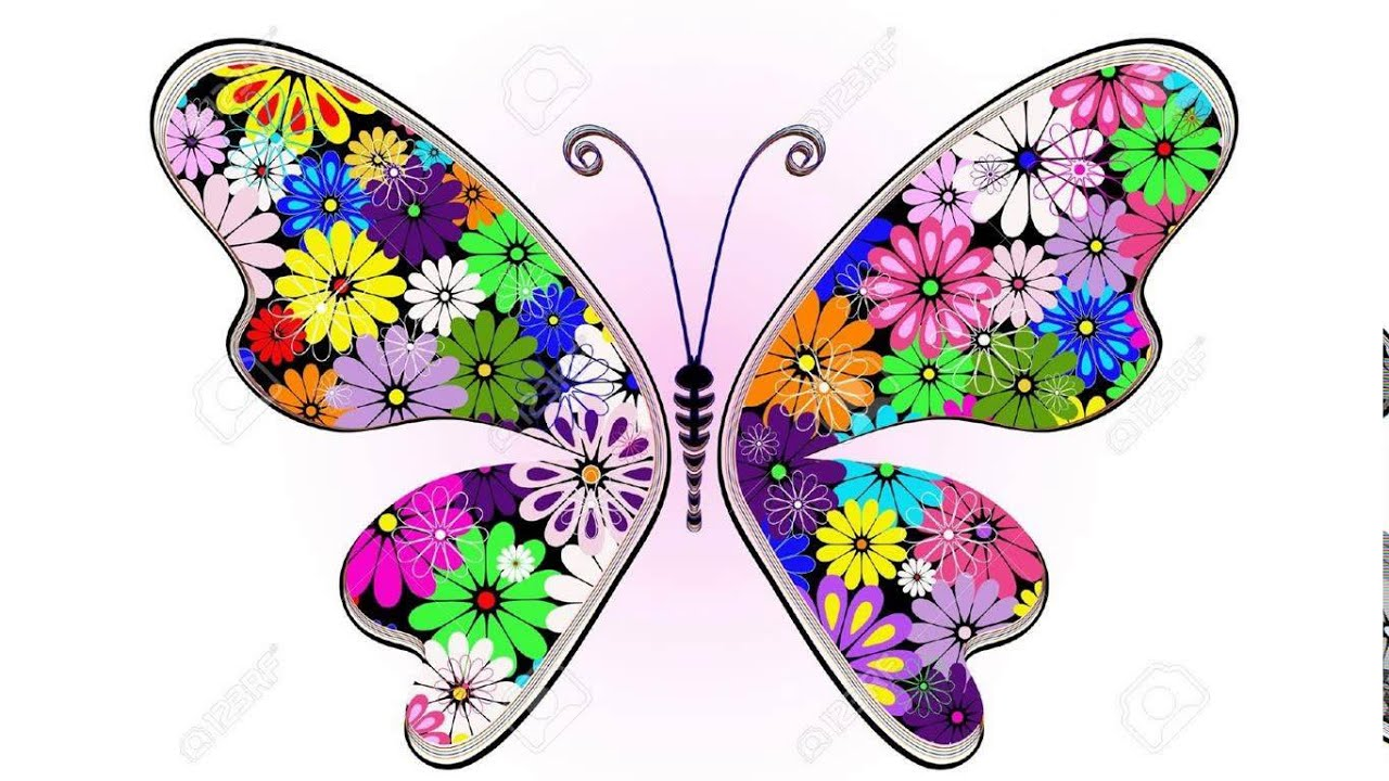 Butterfly designs