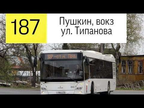 """Автобус 187 """"Пушкин, вокз.- ул. Типанова"""" ."""