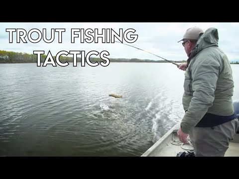 Trout Fishing In Lakes | Tactics & Tips