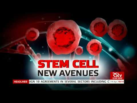 In Depth: Stem Cells- New Avenues