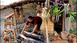 survival in the rainforest - woman cook big two fish for dog - Eating delicious