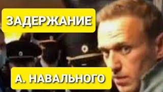 Полное видео задержания Навального в Шереметьево.