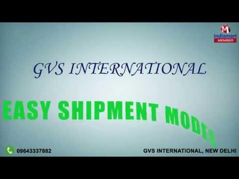 Vaccine Carrier & Medical Ice Pack by GVS International, New Delhi