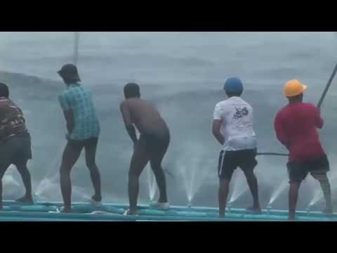 Top 10 Amazing Viral Videos 2016 Net Fishing at Siem Reap Province Cambodia Traditional Fishing