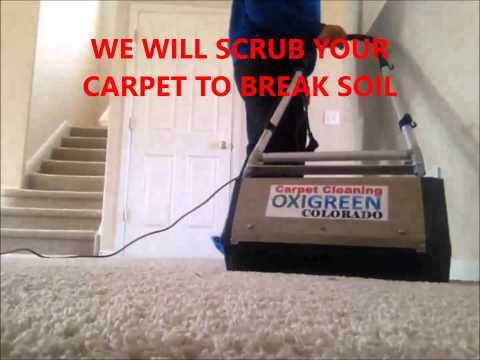 how-to-clean-carpets---oxigreen-colorado