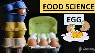Know all about the eggs // egg structure // egg nutritive value