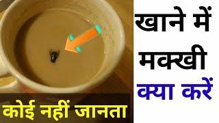 Allah Ne makhi ko kyu banaya | Fly in food | Makhi in food | Islamic video