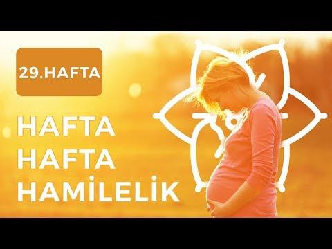 Gebelikte 29.Hafta | Hafta Hafta Hamilelik - Şebboy.com - Op.Dr. Cevahir Tekcan