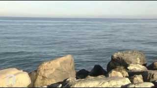 TV Internet 1 Marche -  San Benedetto del Tronto: nuova tragedia del mare, annega un marittimo