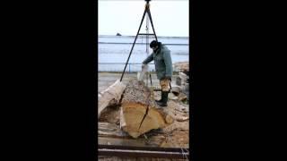 Débitage d'une grume de chêne