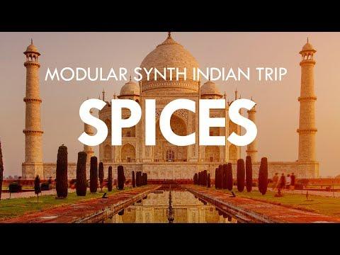 SPICES - Morphagene, Assimil8or, Rings, Plaits, Neutron, Magneto, Black Hole DSP 2