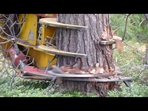 #Amazing latest technology machines new, farm machinery and equipment, awesome tractor videos #HD #2