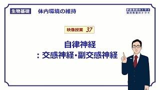 【生物基礎】 体内環境の維持37 自律神経:交感神経・副交感神経 (18分)