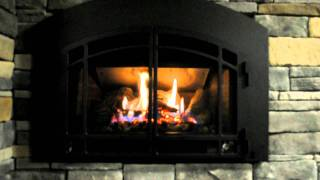 Mendota D30 Gas Fireplace Insert
