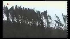 Der Orkan Lothar - Dezember 1999