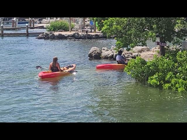 Kayaking | Lifestyle of Sarasota, Florida