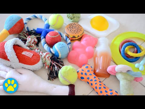 how-to-clean-dog-toys