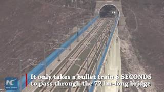 """6 seconds to cross it! """"Super"""" bridge allows bullet trains to pass at full speed"""