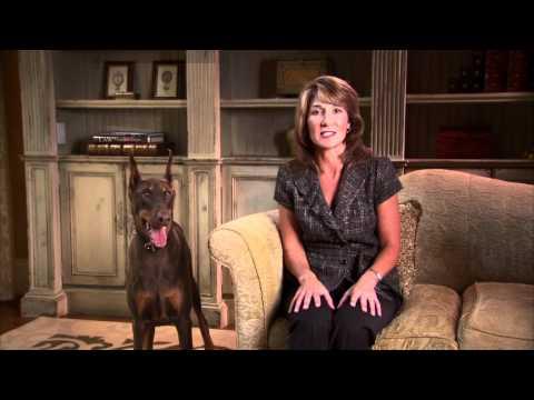 "Karyn Polito Ad - ""Watchdog"""