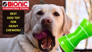 Indestructible DOG TOYS - Reviewed by DOGS!