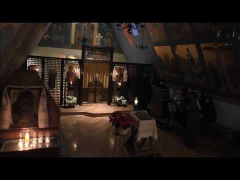 Matins and Divine Liturgy  Postfeast Theophany  Fr. Joel Brady
