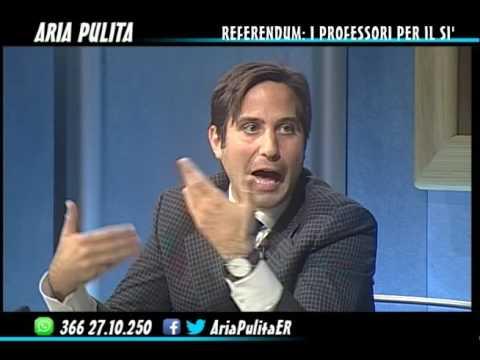 AriaPulita - Referendum. I professori per il sì