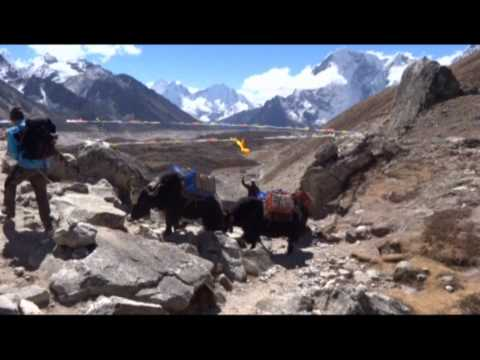 Everest Sagarmatha 5500 film