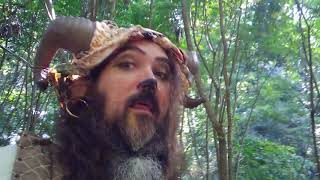 Zeek explores the forest