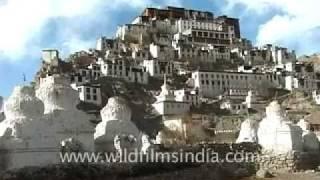 Stok palace, Leh, Jammu & Kashmir