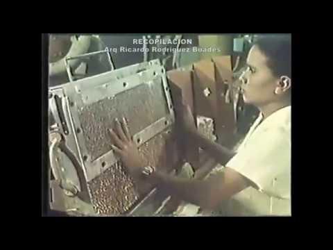 Vista De  Maracay Estado Aragua Venezuela Años 70