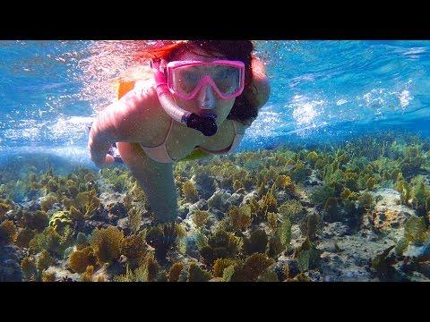 Coco Cay, Atlantis, Paradise Cove (Grand Bahama) Snorkeling