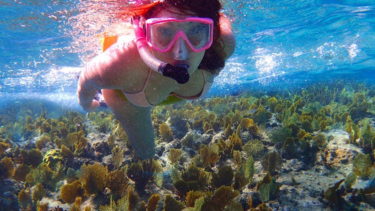 Best Caribbean Island Beaches Snorkeling