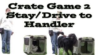 Crate Games 2: Stay/drive To Handler - Dog Training