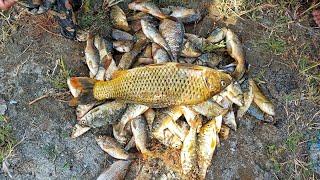 Fishing 01052021 Fishing Indus River Swabi