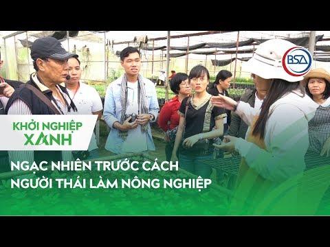 Ngạc nhiên trước cách người Thái làm nông nghiệp | Khởi Nghiệp Xanh