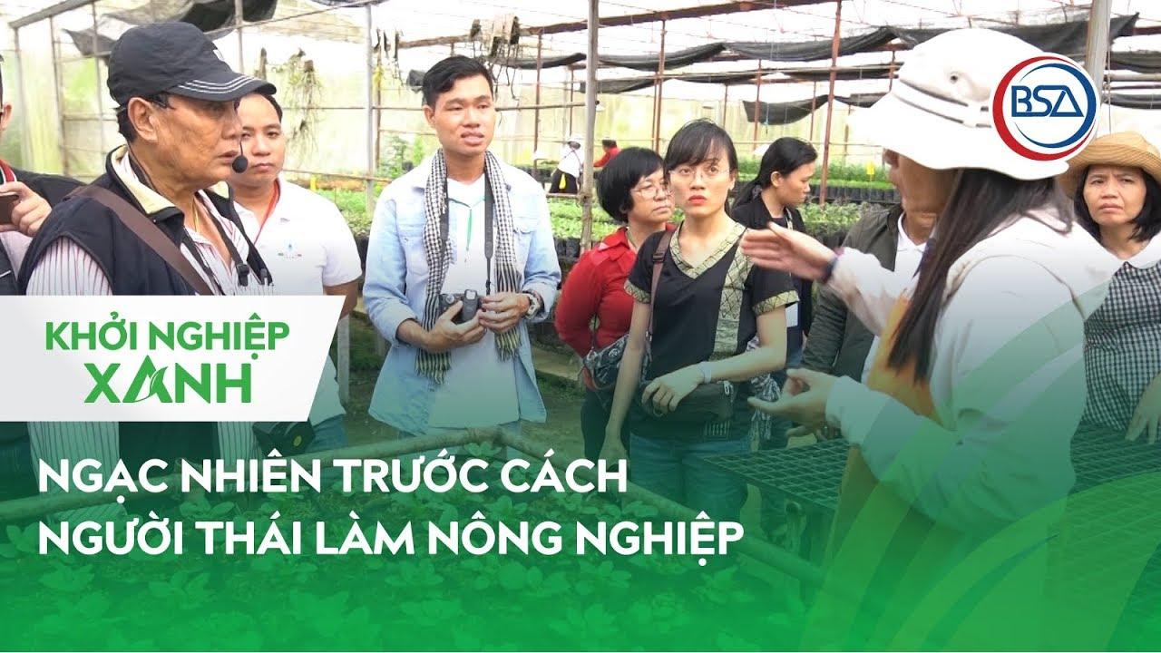 Ngạc nhiên trước cách người Thái làm nông nghiệp   Khởi Nghiệp Xanh