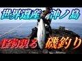 【カゴ釣り】世界遺産 宗像 沖ノ島で磯釣り!【ヒラマサ】