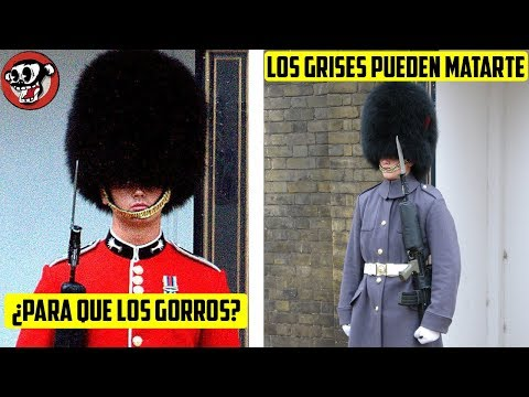 7 Secrets That The Royal Guard DOES NOT WANT YOU TO KNOW!