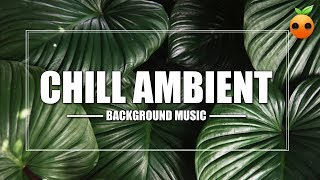 Chill Ambient - Background Music   Royalty Free Music   Stock Music   Instrumental