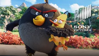 The Angry Birds Movie - Now on Digital