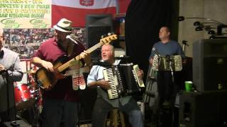 Chicago Musicians Jammin (2015) - Theresa Polka