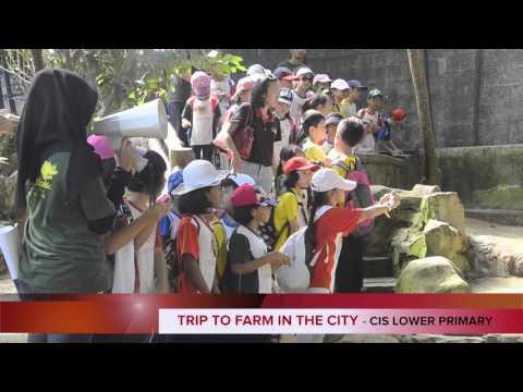 Cempaka International School Cheras Trip to Farm in the City 2016
