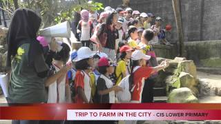 Cempaka International School Cheras Trip to Farm in the City 2016