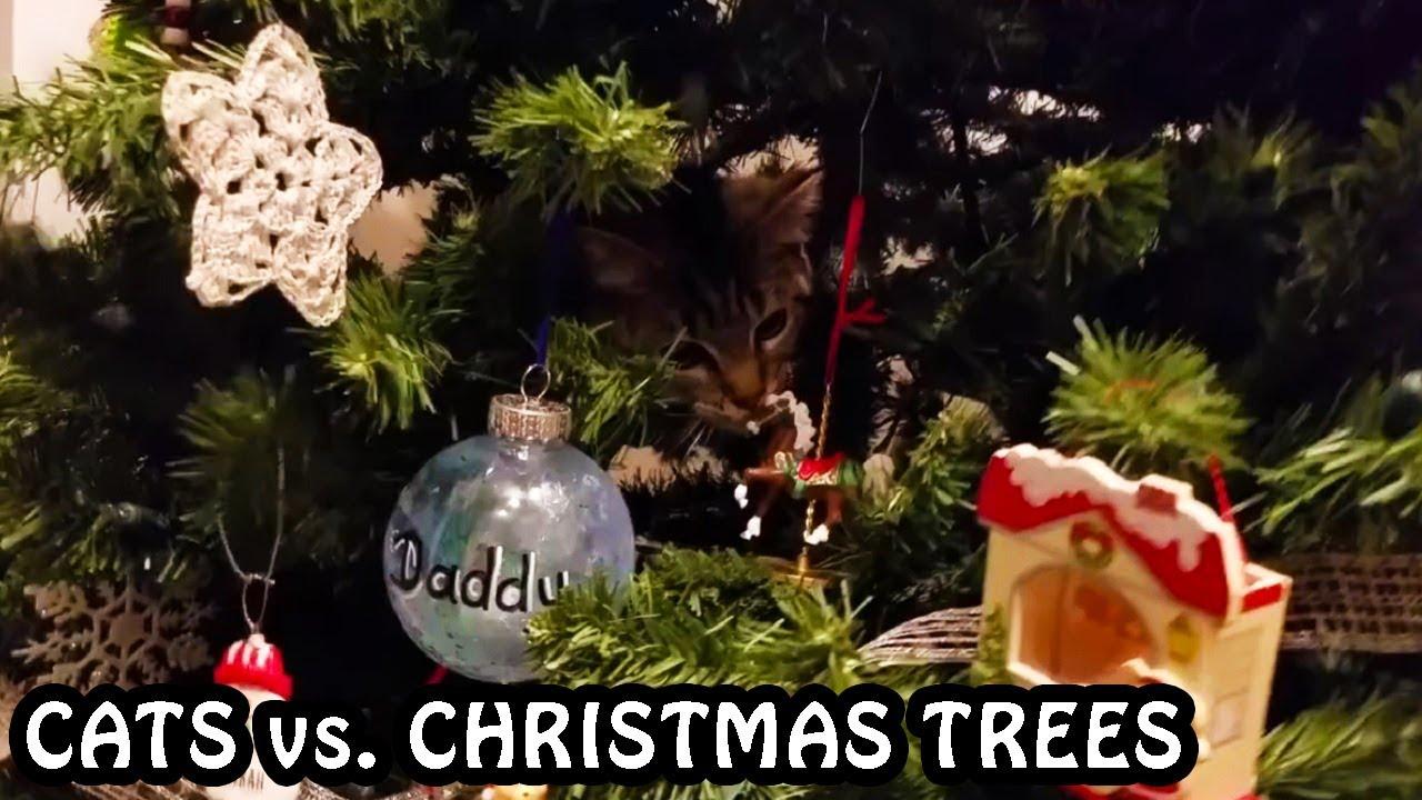 Cats Vs Christmas Trees.Cats Vs Christmas Trees Compilation 2018 2019