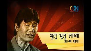 Bhulu Bhulu Lagyo Malai Karaoke with Lyrics
