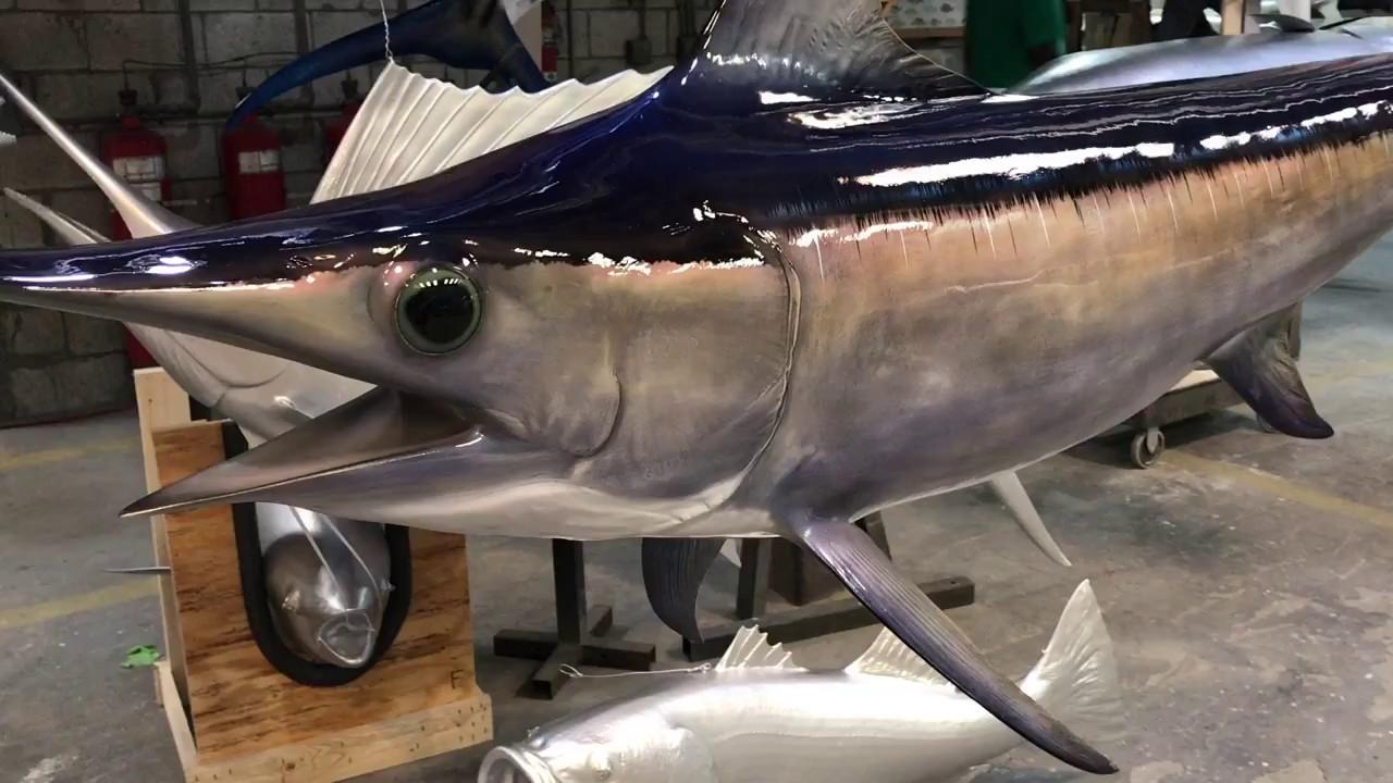 swordfish mount gray trophy fishmounts youtube