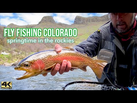 FLY FISHING COLORADO ... Catching feisty Spring trout in the Colorado Rockies