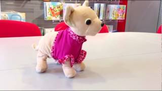 Интерактивная собачка Чихуахуа 'Шоу звезда' Chi Chi Love 'Show star' от Simba, 5897617